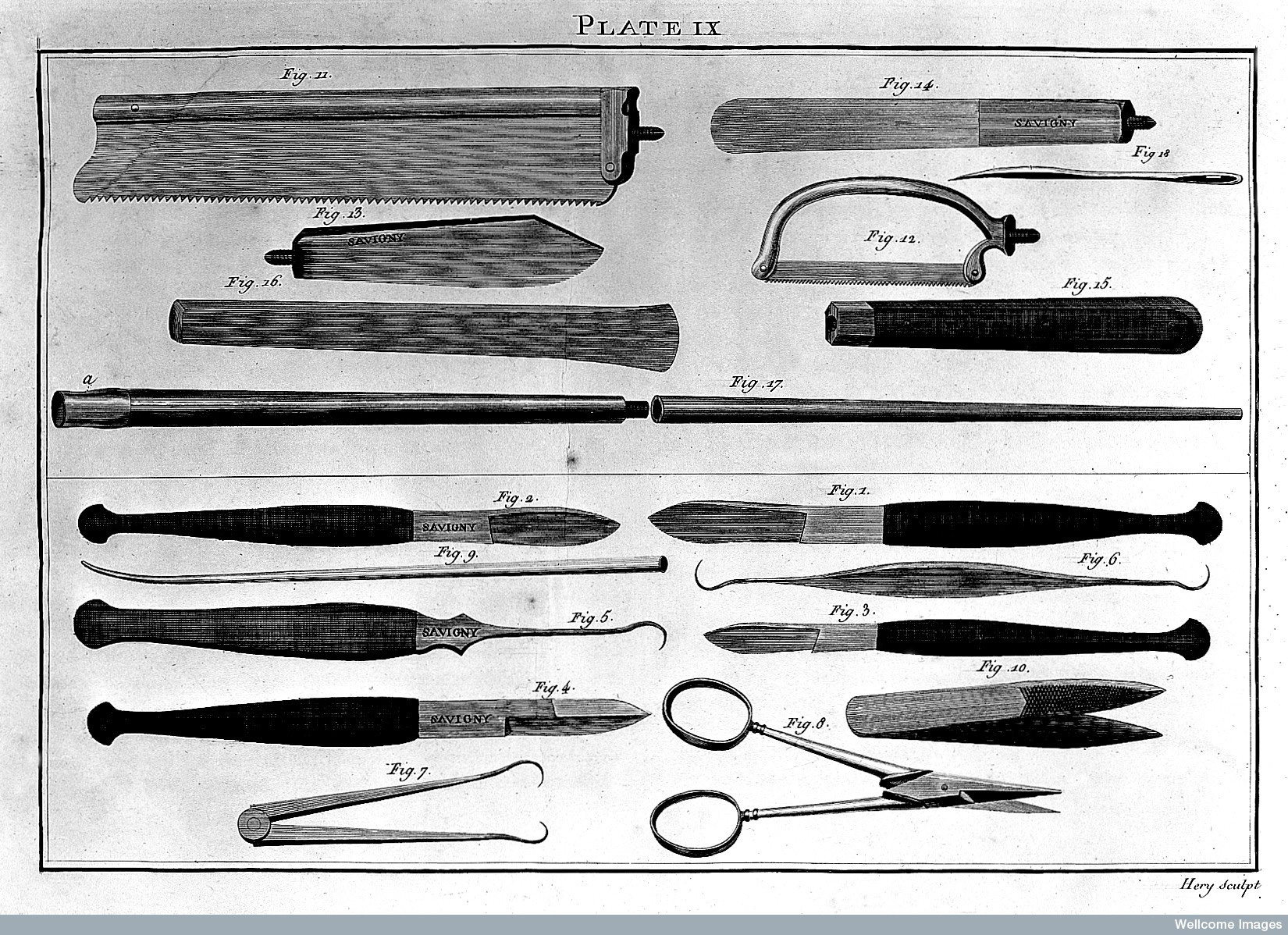 Instruments for use in anatomical dissection
