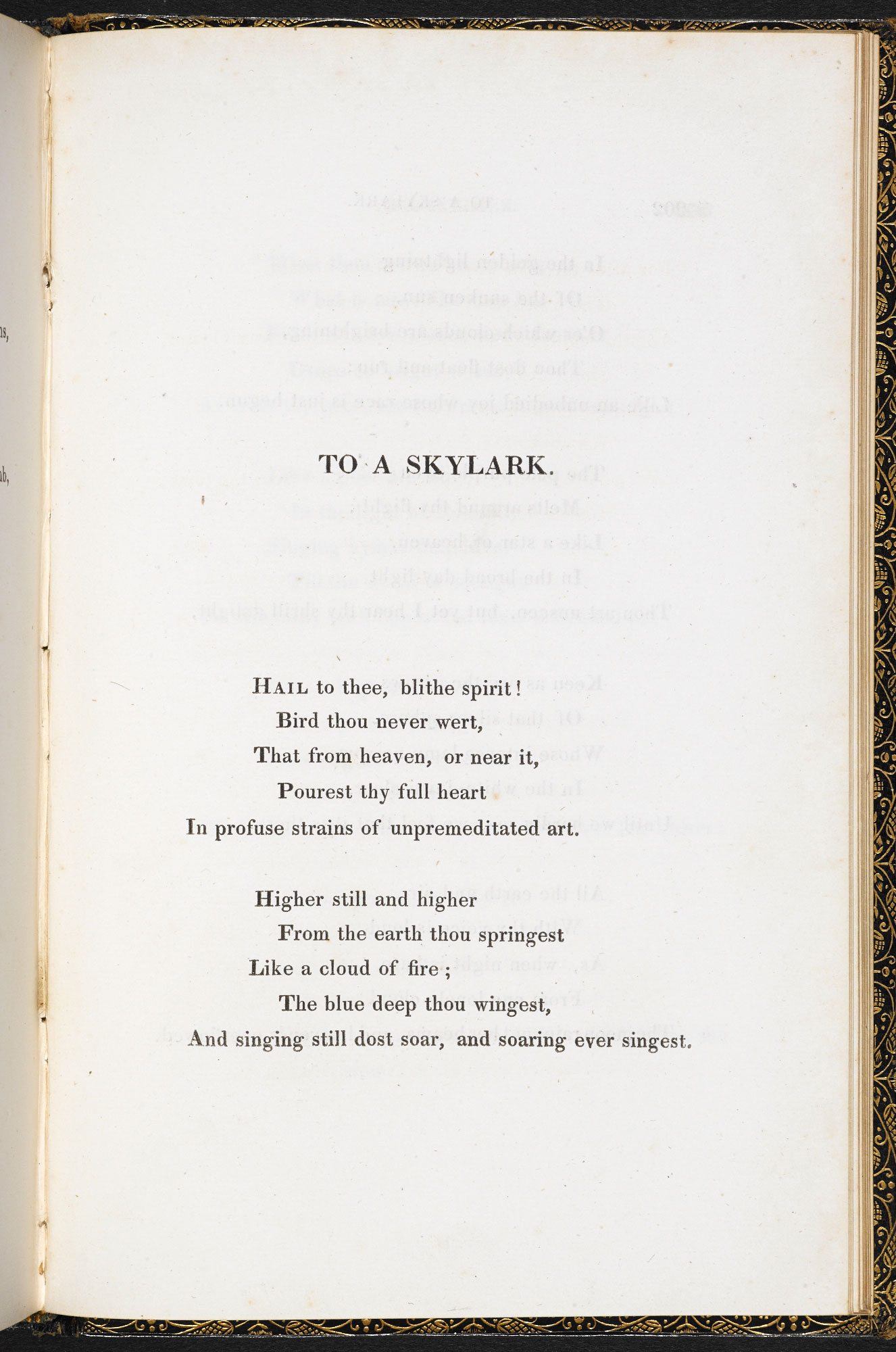 'To a Skylark' by P B Shelley