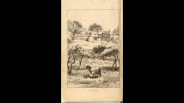 Millais's illustrations for Orley Farm by Trollope