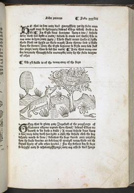 Page from Aesop's Fables printed by William Caxton, with printed text and a woodcut illustration of a fox looking up at a raven which is perched in a tree