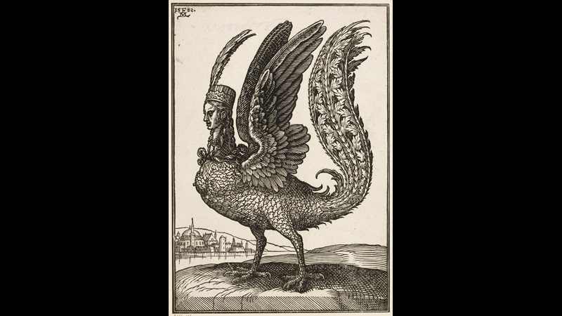Engraving of a harpy