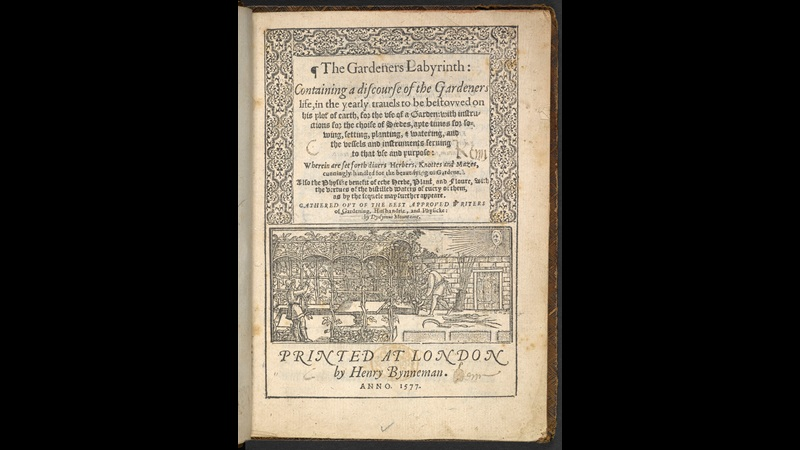 Elizabethan gardening manual with images of mazes, arbours and pleached bowers