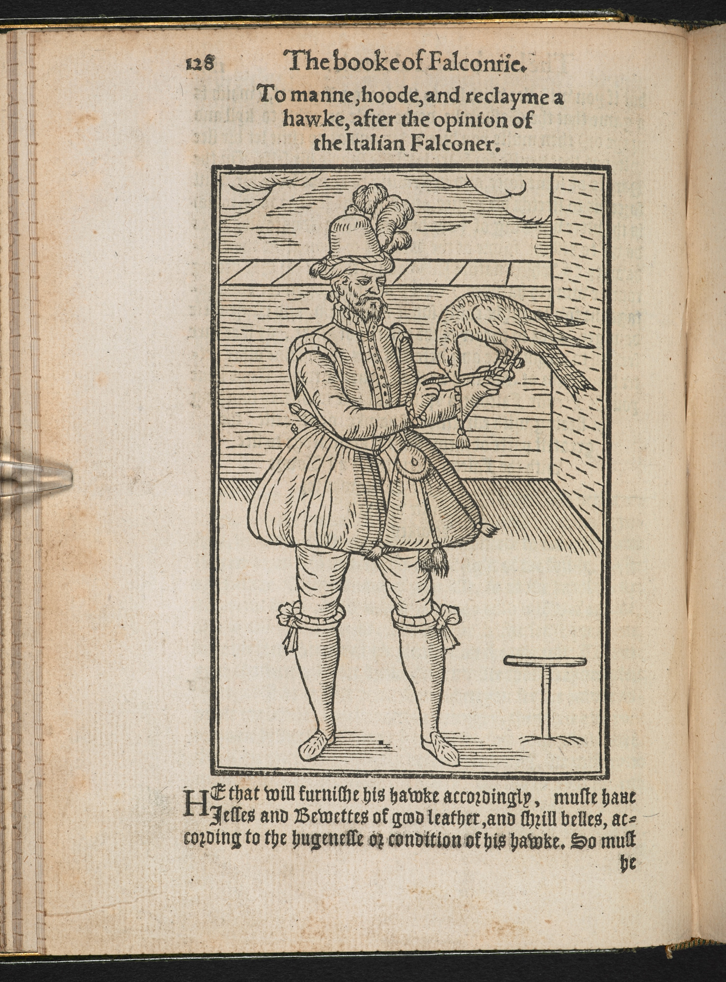 The Book of Falconry or Hawking by George Turberville, 1575