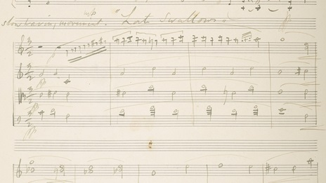 Sketch of Frederick Delius' Late Swallows