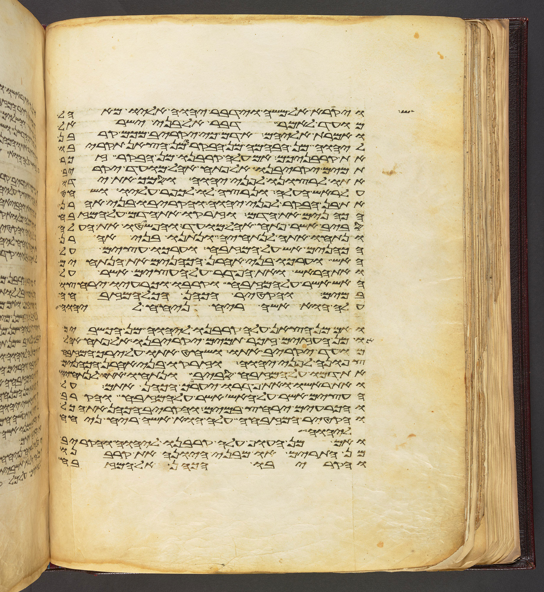 A Samaritan Manuscript of the Torah‬‏