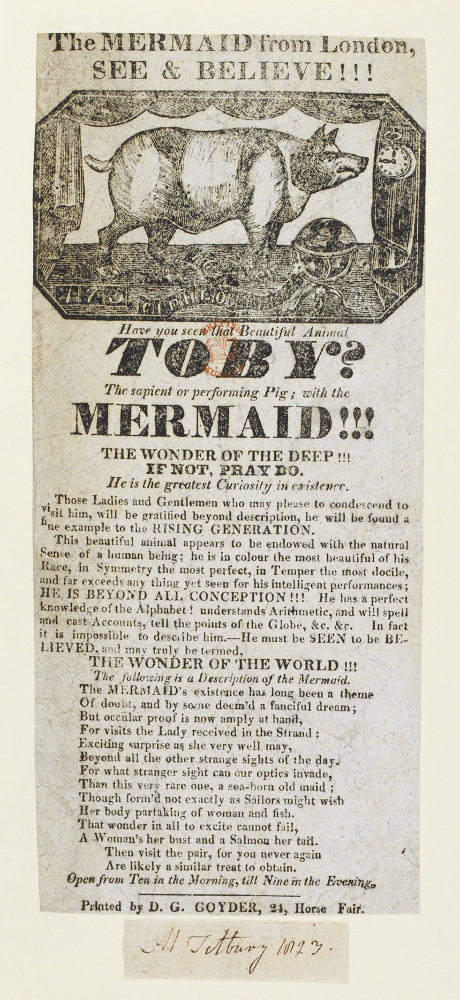 Poster advertising the exhibition of a mermaid and Toby, the performing pig