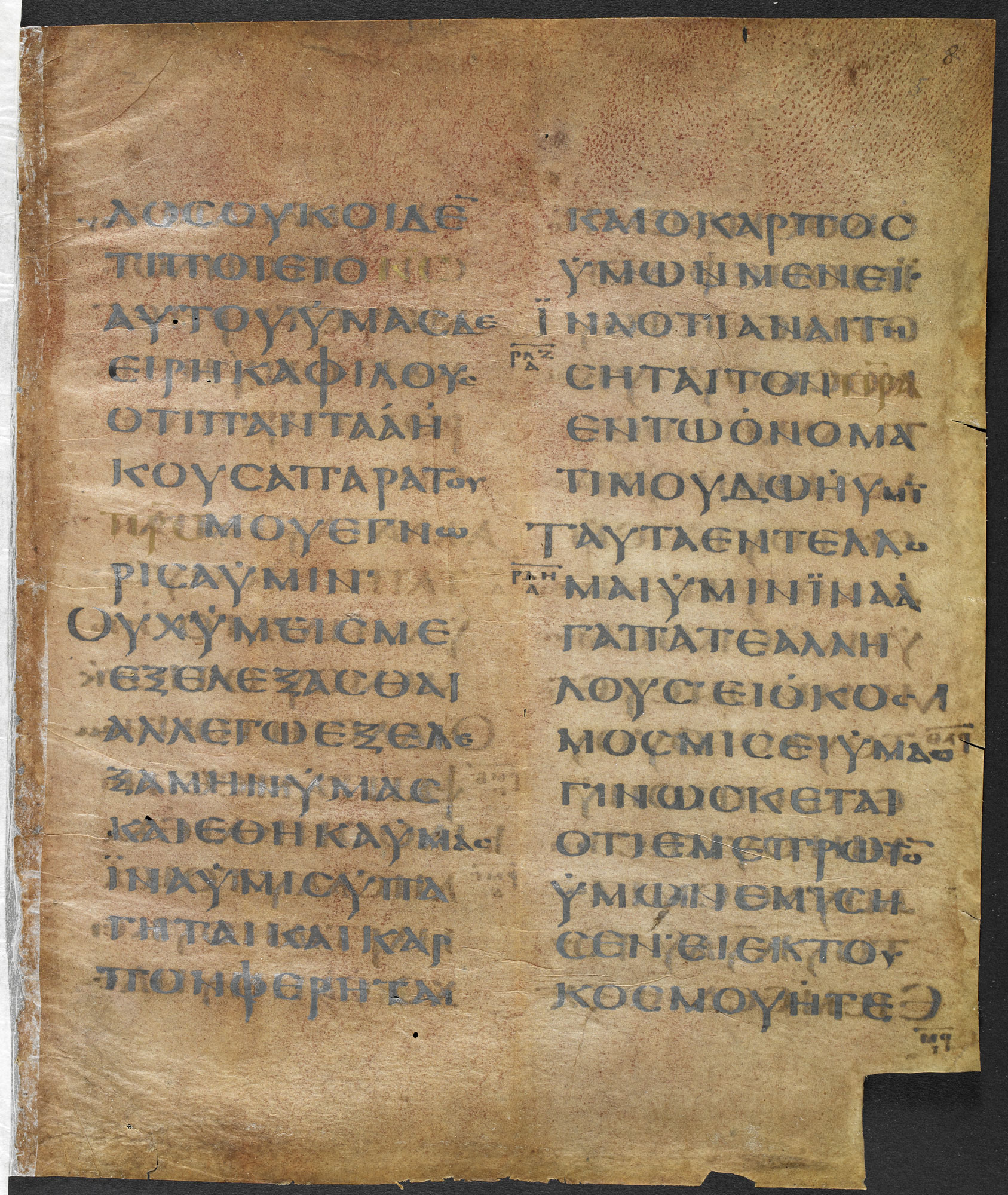 Greek Gospels on Purple Parchment (Cotton MS Titus C XV f005r)