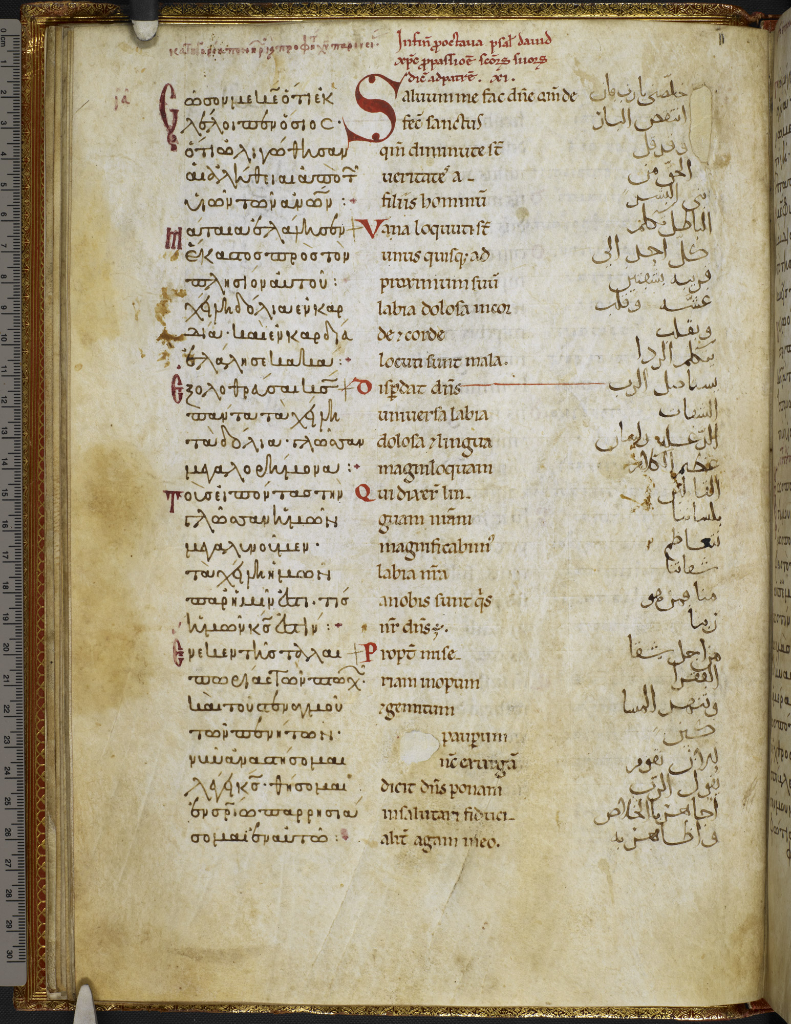 The Harley Trilingual Psalter (Harley MS 5786 f012v)
