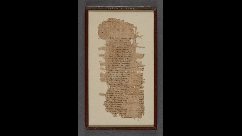 A fragment of a 2nd- or 3rd-century papyrus roll, featuring a passage from Aristophanes of Byzantium's De Animalibus.
