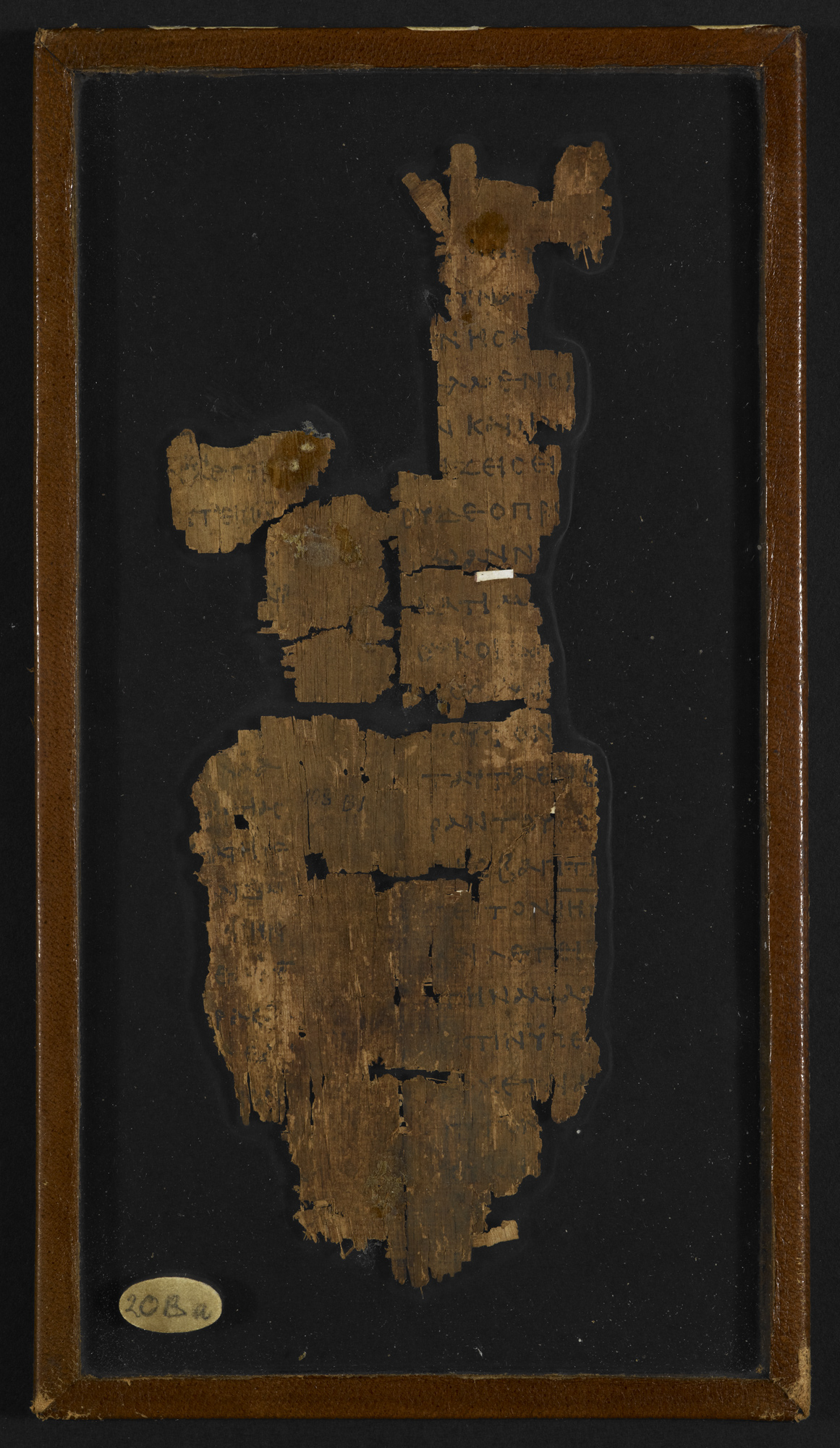 The Gospel of John Papyrus (Papyrus 782)