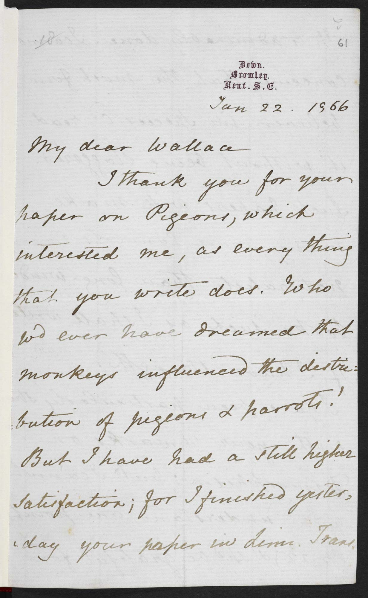 Darwin's letter to Wallace,f61
