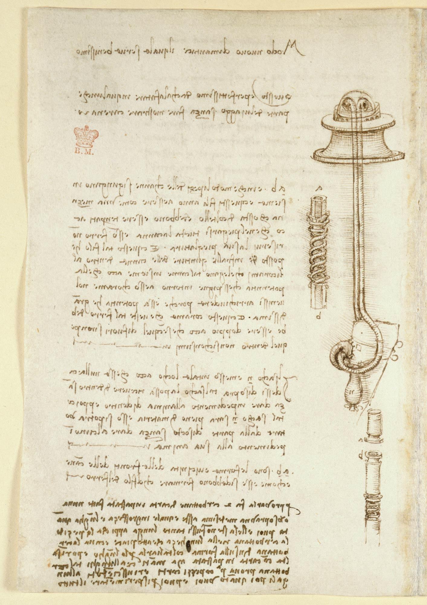 Leonardo da Vinci's Notebook - The British Liry on