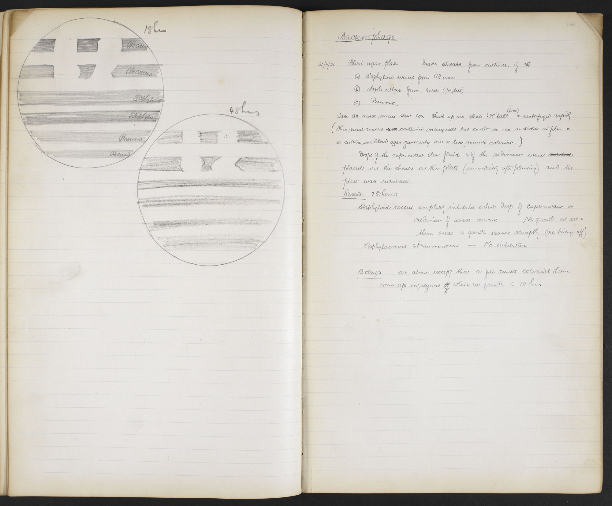 Sir Alexander Fleming's Lab Books
