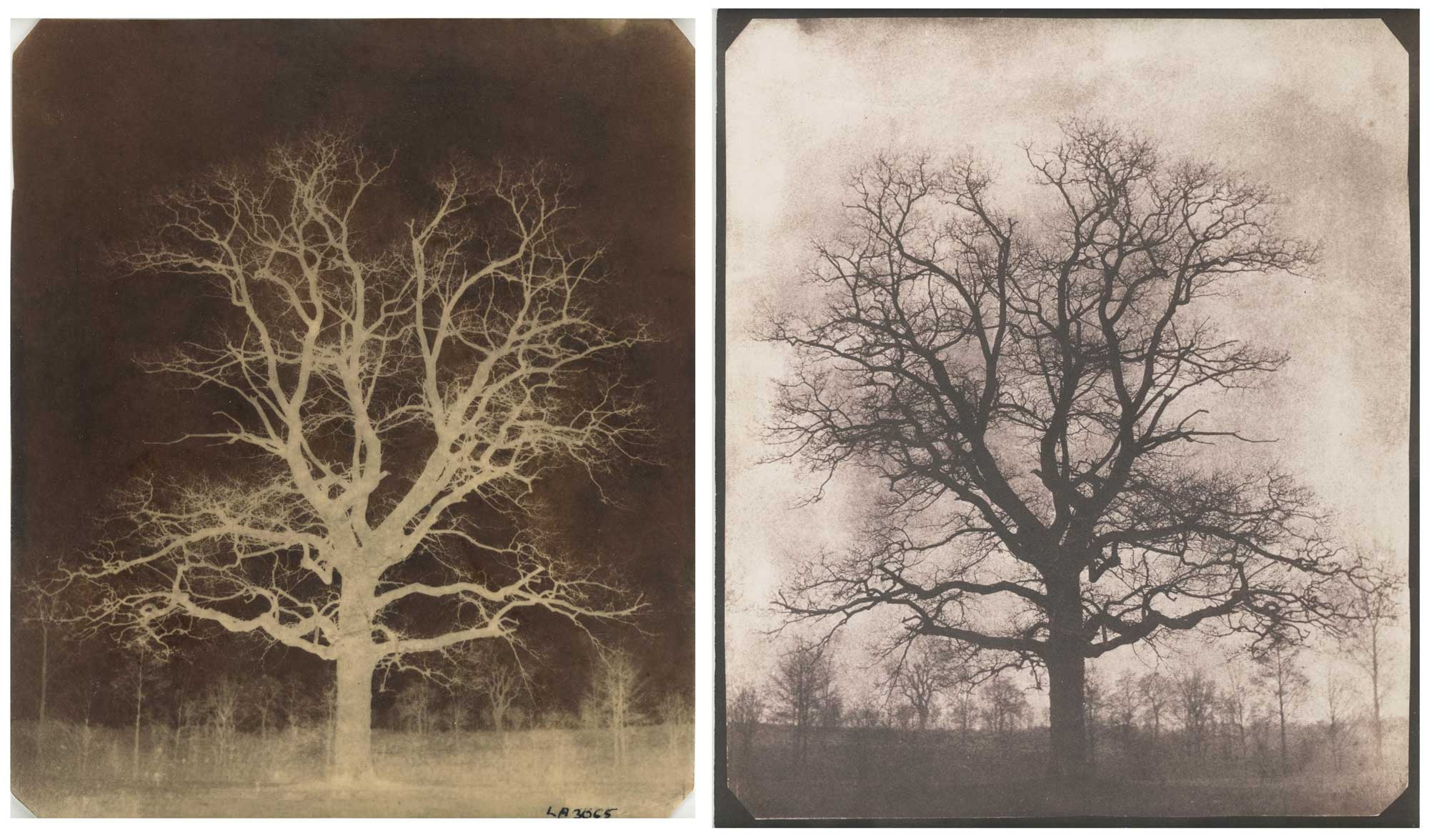 Early calotype by Fox Talbot, 1842