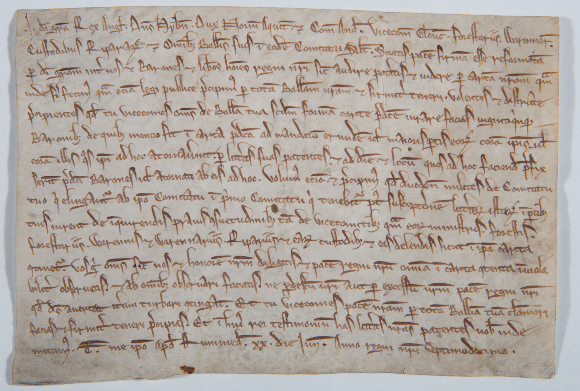 Writ for publishing Magna Carta
