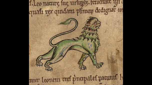An illustration of a lion from a 12th-century bestiary.
