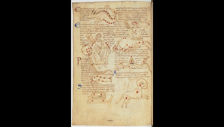 A page from a 12th-century astronomical collection, showing a number of illustrations of the constellations.