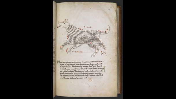 A page from a manuscript containing Cicero's Aratea, showing an illustration of the constellation Sirius.