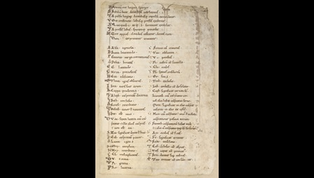 A page from an 11th-century miscellany, featuring an English alphabet collection.