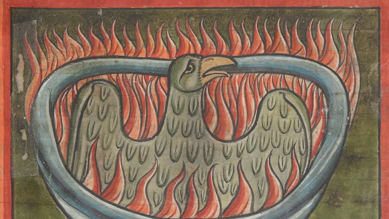 An illustration of the rebirth of the phoenix, from an English bestiary.