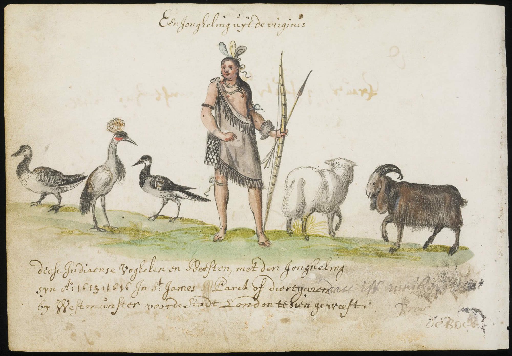 Image of virginian indian