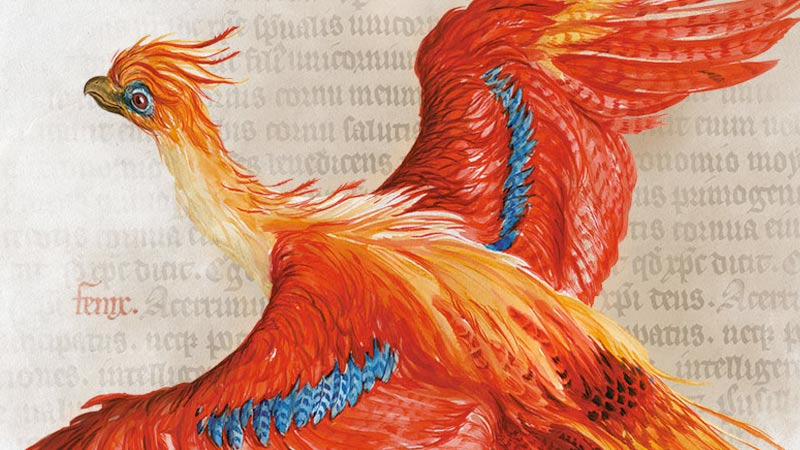 Harry Potter: A History of Magic exhibition at the British Library, open 20 October 2017 - 28 February 2018