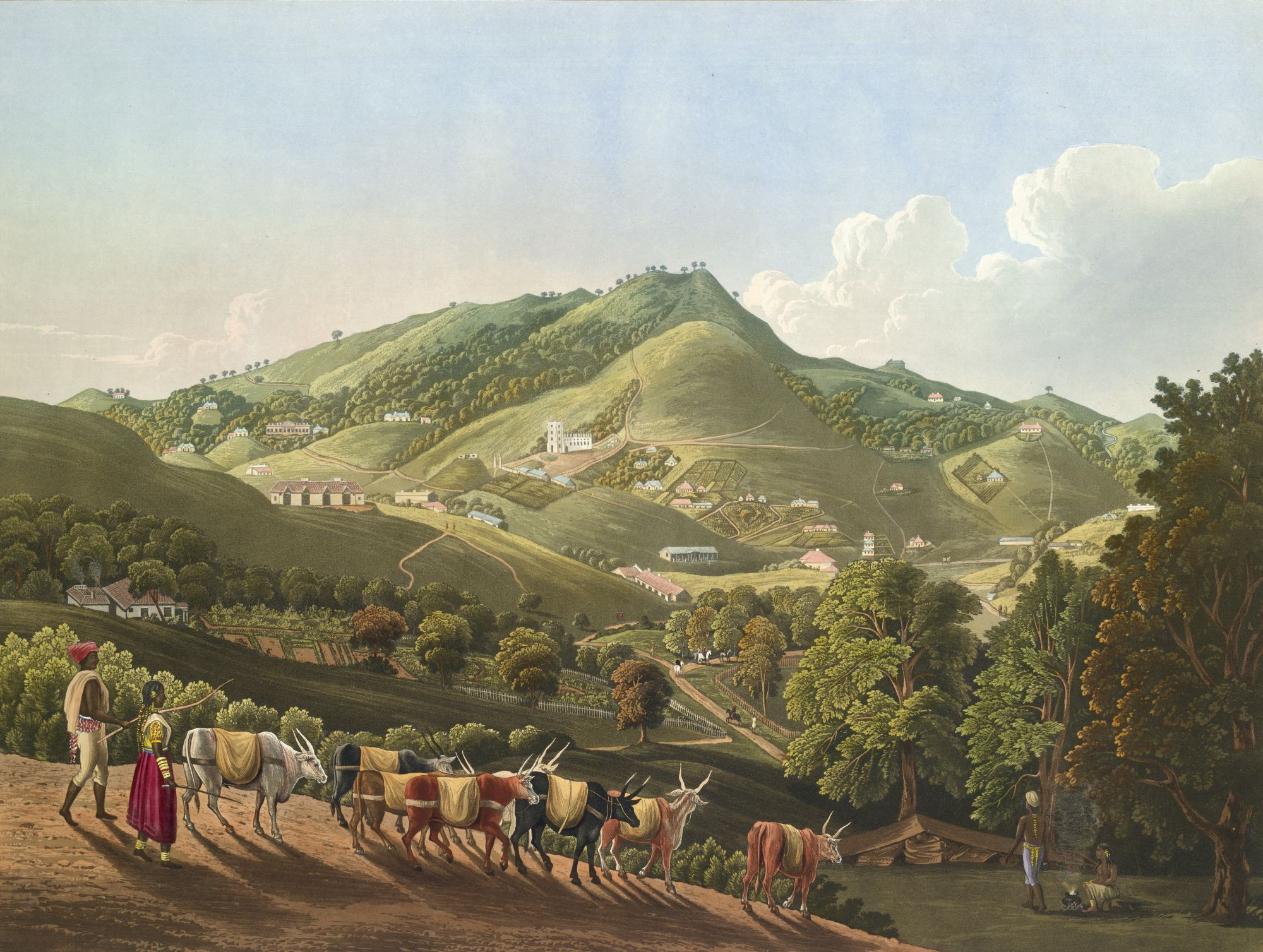 A General View in Ootacamund, by Robert Havell after Richard Barron.