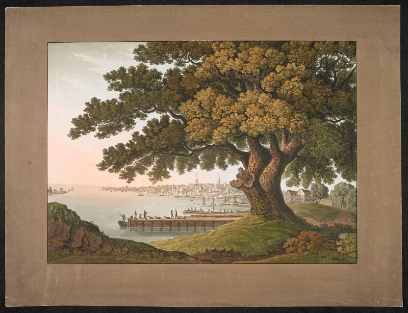 Elm tree at right in the foreground, with five men standing on a wharf among cannons beyond at left, ships and boats moored near the harbour and view of Philadelphia in the background. Pasted on mount annotated on verso: 'Drawn by G. Beck / Engraved by J. Cartwright, London / Published Jan.y 1. 1801, by Atkins and Nightingale No. 143 Leadenhall Street, London, and No. 35, North Front Street, Philadelphia. / Philadelphia from the great Tree at Kensington under which Penn made his great treaty with the Indians'.