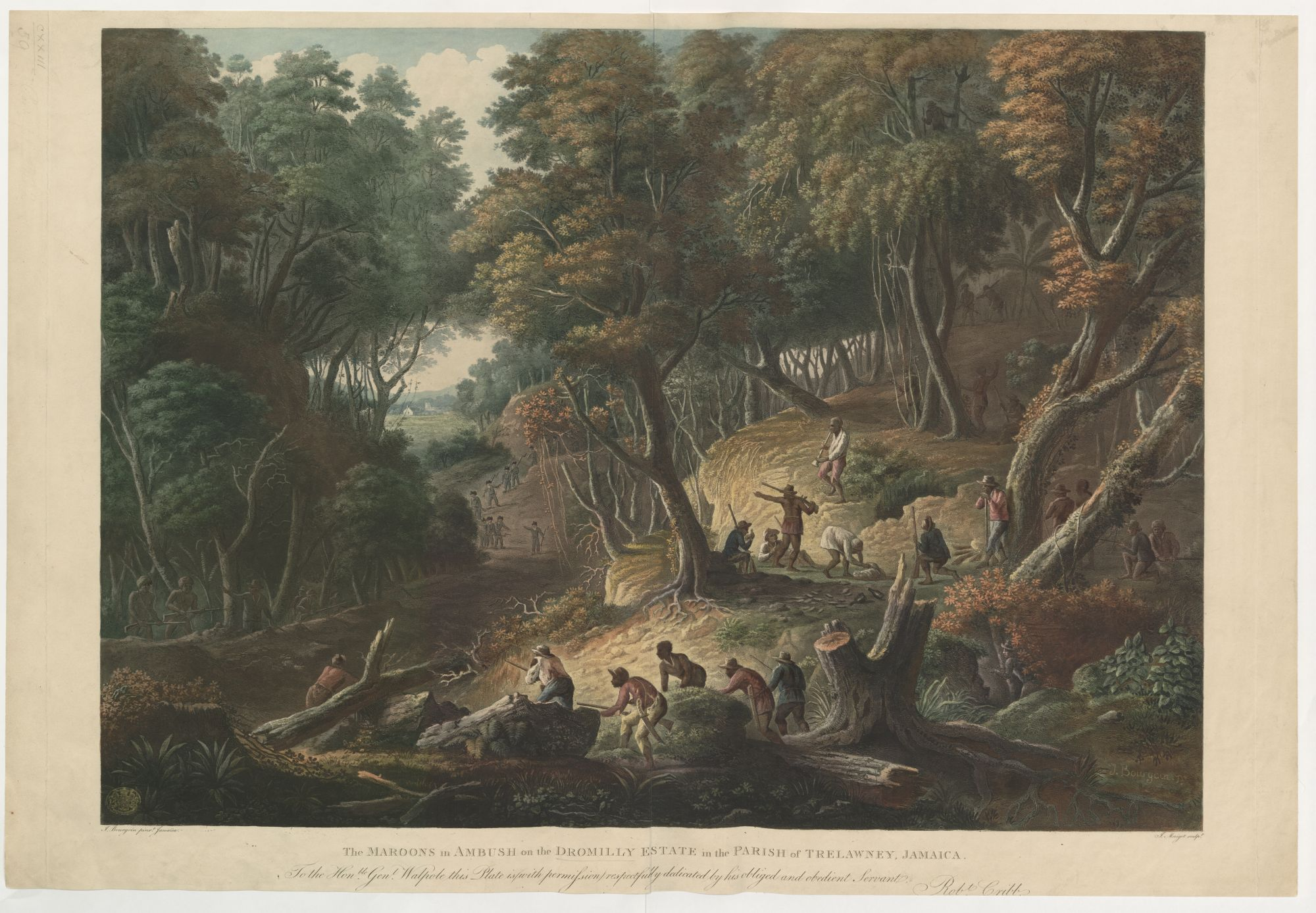 Aquatint showing the Trelawny Parish Maroons ambushing British troops on the Dromilly Estate, Jamaica