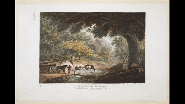 John Hassell (1767–1825), Oak felling for Ship Timber: a view in the New Forest Hants., 1798, hand-coloured aquatint and etching, Maps. K.Top.14.84.a.