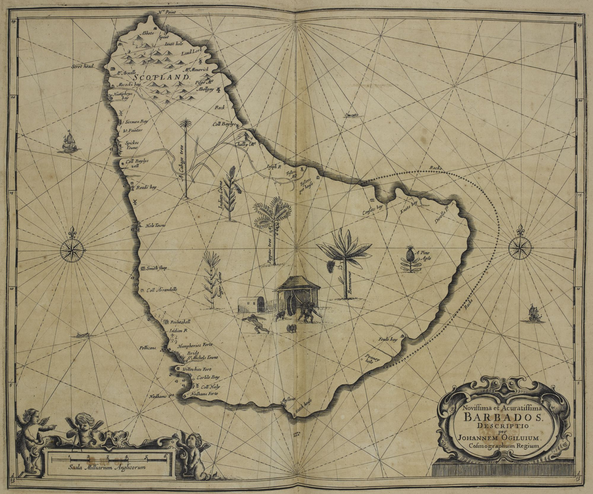 John Ogilby's map of Barbados