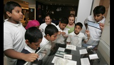 School pupils in the British Library Learning Centre