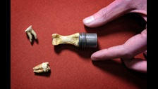 King John's teeth, on loan from Worcester City Art Gallery & Museum, and thumb bone, on loan from Worcester Cathedral, being prepared to go on display in Magna Carta: Law, Liberty, Legacy. Photography © Clare Kendall.