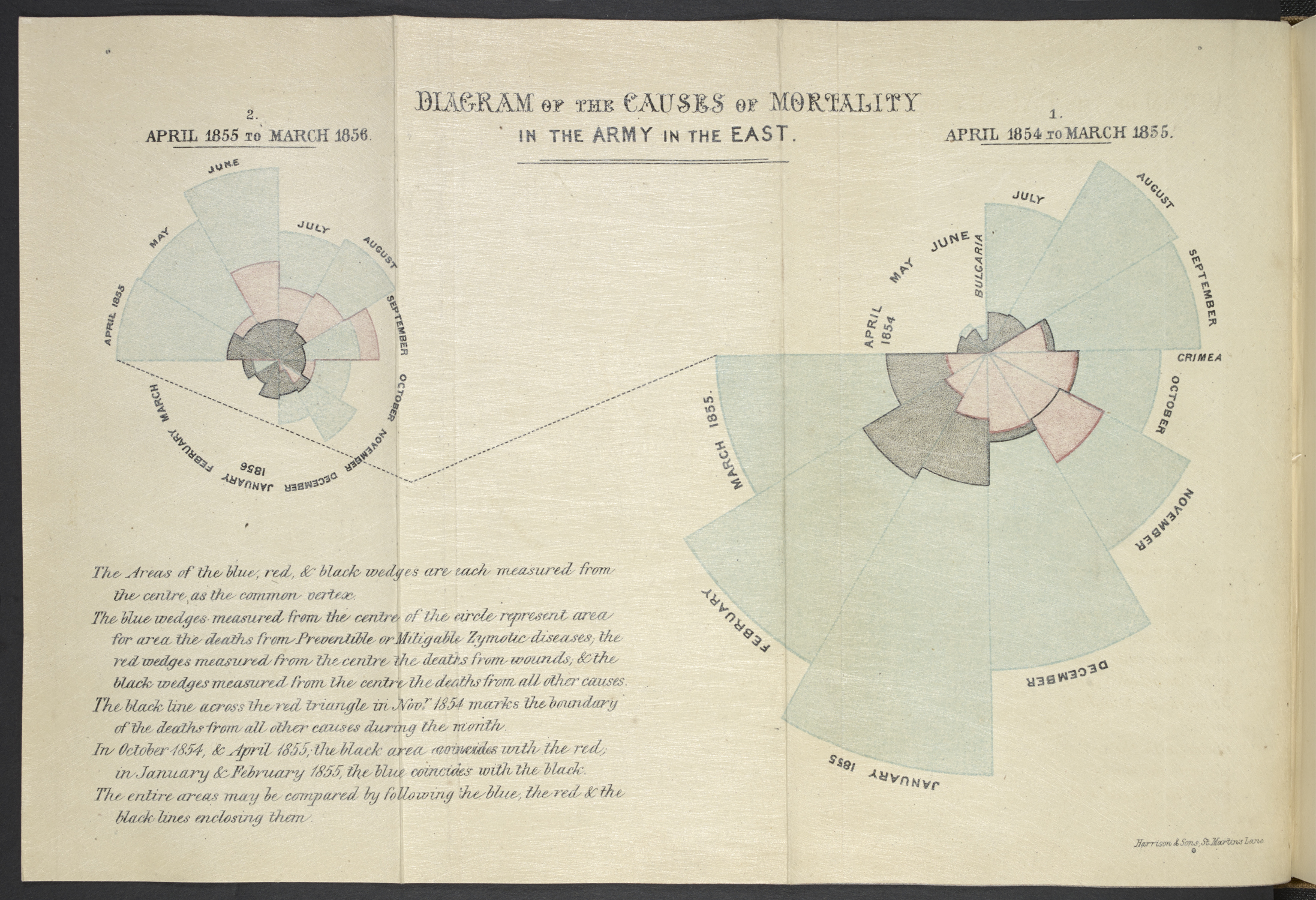 Diagram of the Causes of Mortality in the Army in the East Florence Nightingale on display in Beautiful Science. Notes on matters affecting the health efficiency and hospital administration of the British Army. London 1858.