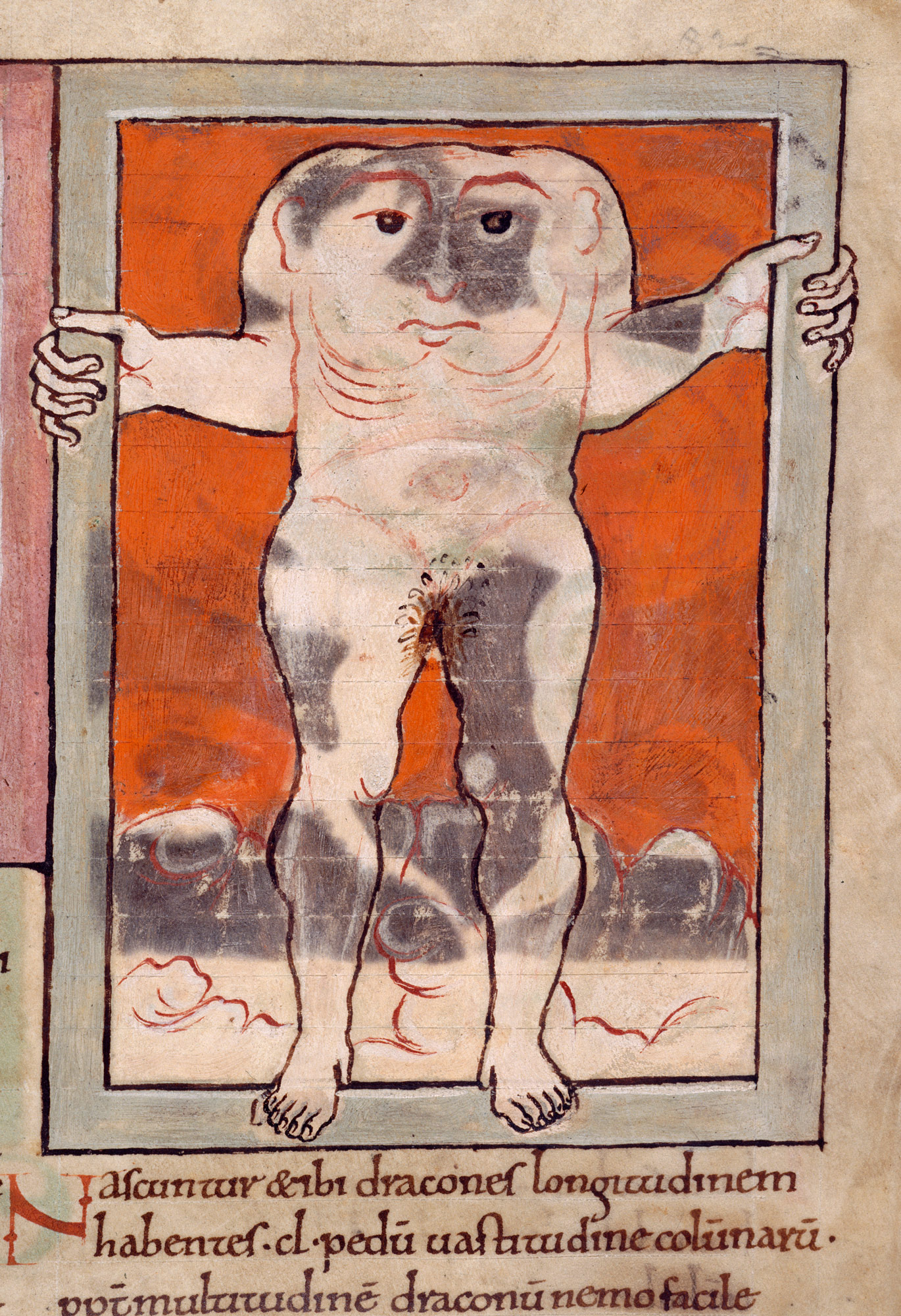 A blemmyae (man with its head in its chest), as described in Wonders of the East