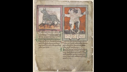 Cotton MS Tiberius B V/1, f. 82r