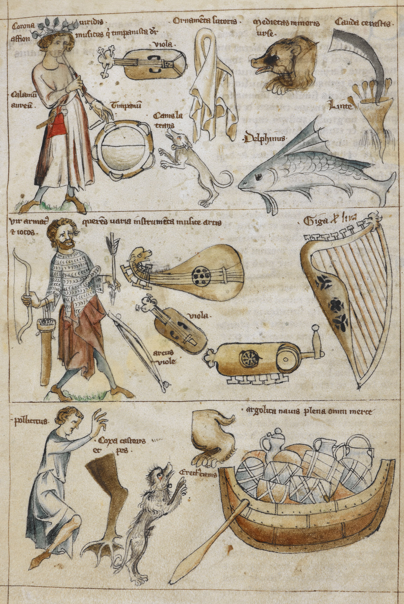 Instruments including a harp, viola, lute and hurdy-gurdy