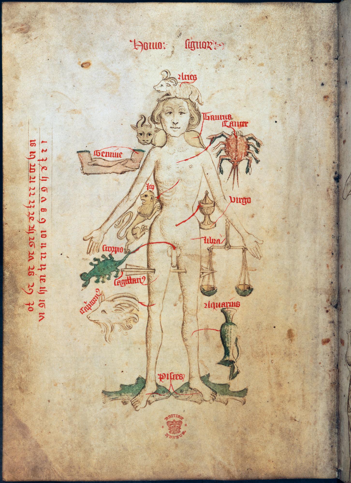 A 'Zodiac man'