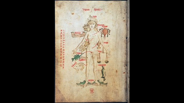 Page from a medical manuscript containing an illustration of a 'Zodiac man', a figure surrounded by astrological text and symbols such as crab for Cancer and two fish for Pisces