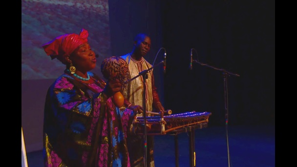 This photograph shows a live performance of the West Africa Sunjata epic, October 2014.