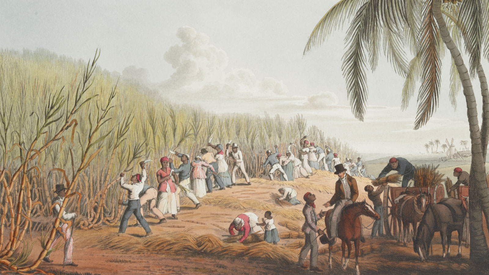 An introduction to the Caribbean, empire and slavery banner