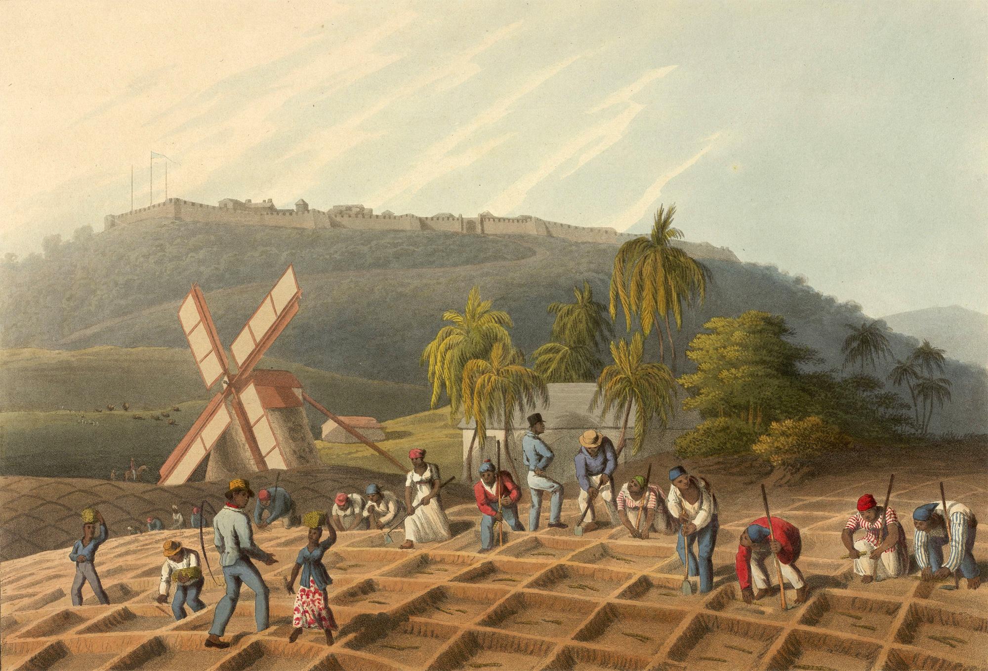 Prints depicting enslaved people producing sugar in Antigua, 1823