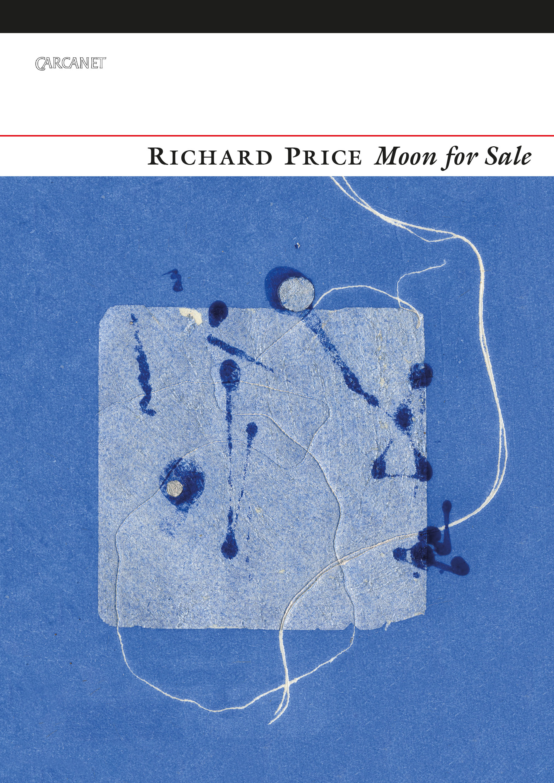 Moon for Sale by Richard Price