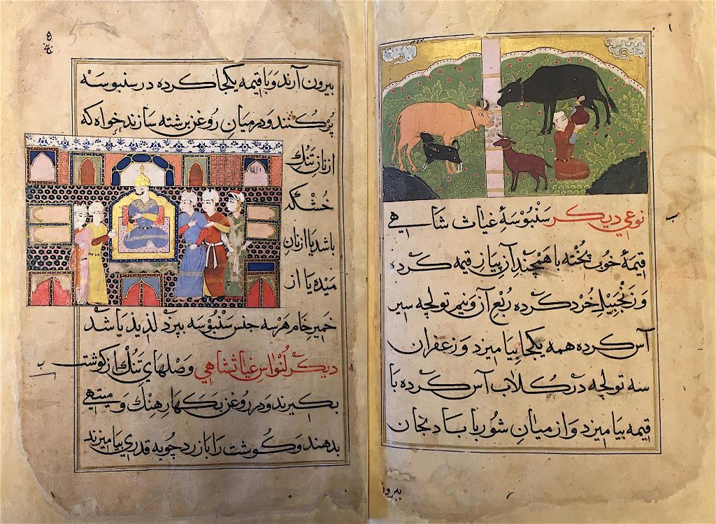 Sultan Ghiyas al-Din seated on his throne (left) and Cows being milked (right), (British Library IO Islamic 149)