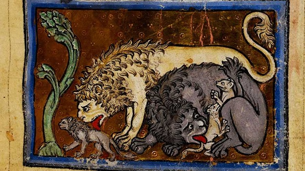Manuscript illumination featuring lions with cubs.