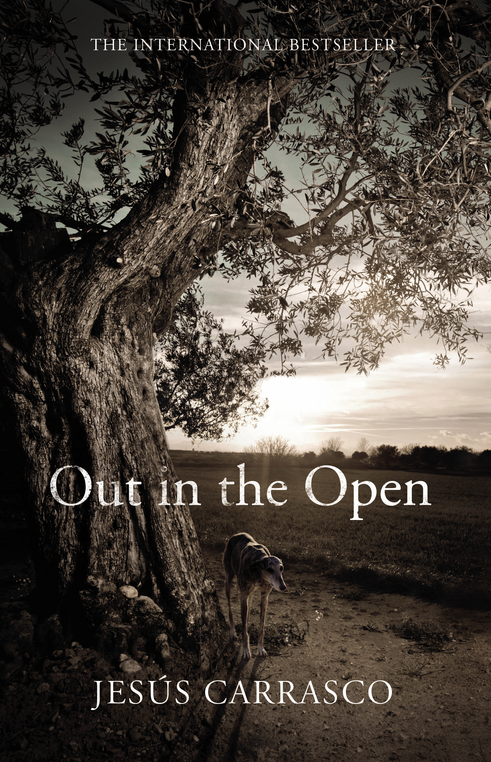 Cover image from Out in the Open, by Jesús Carrasco