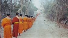 A procession of Buddhist monks walk into the distance down a wooded, slightly snowy path