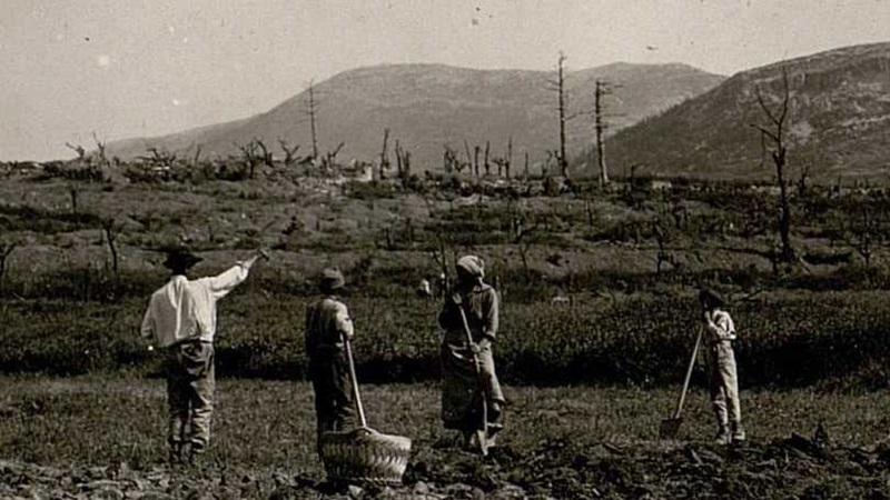 Photograph of four people working in a field with mountains in the background