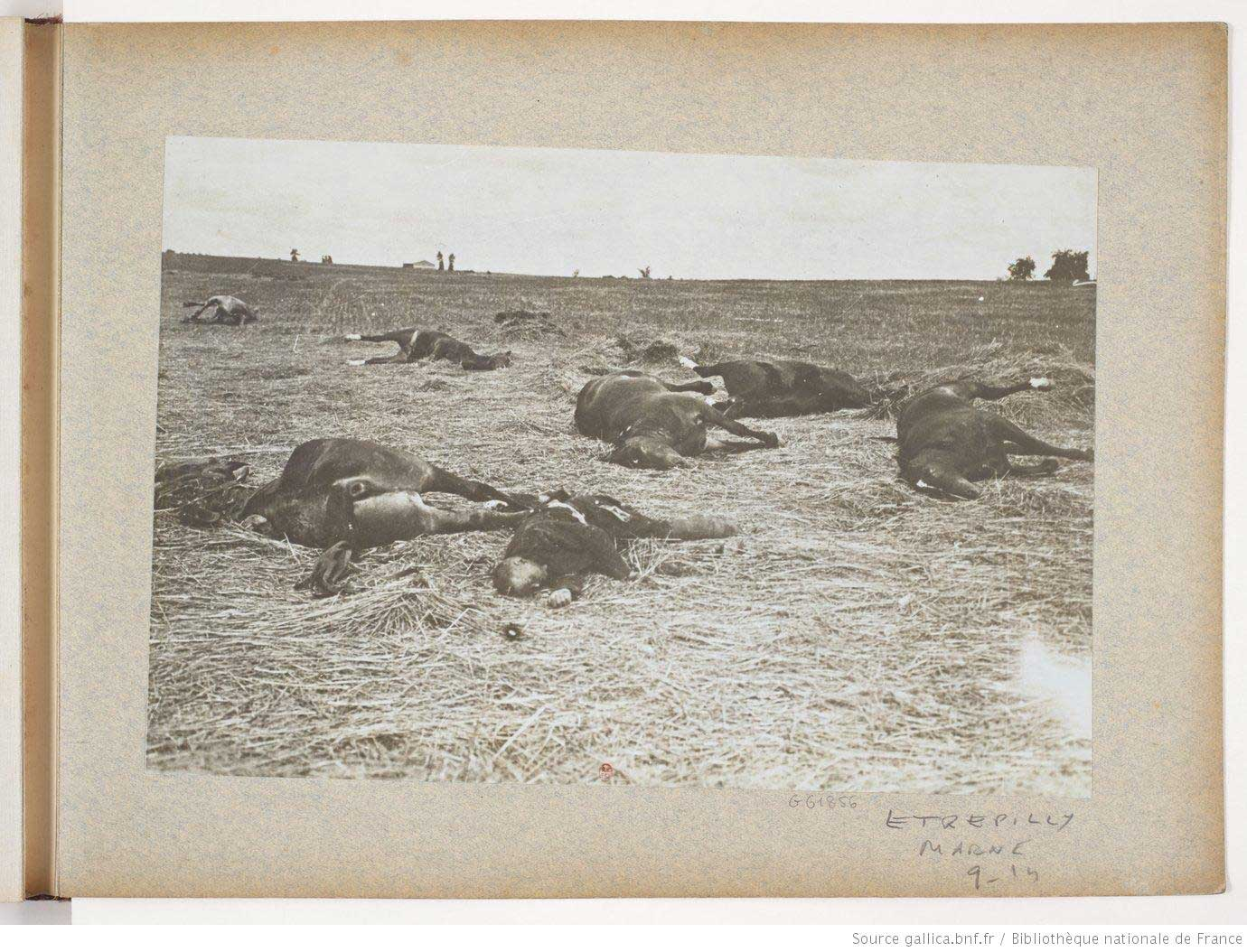 Battlefield at Etrepilly, Marne