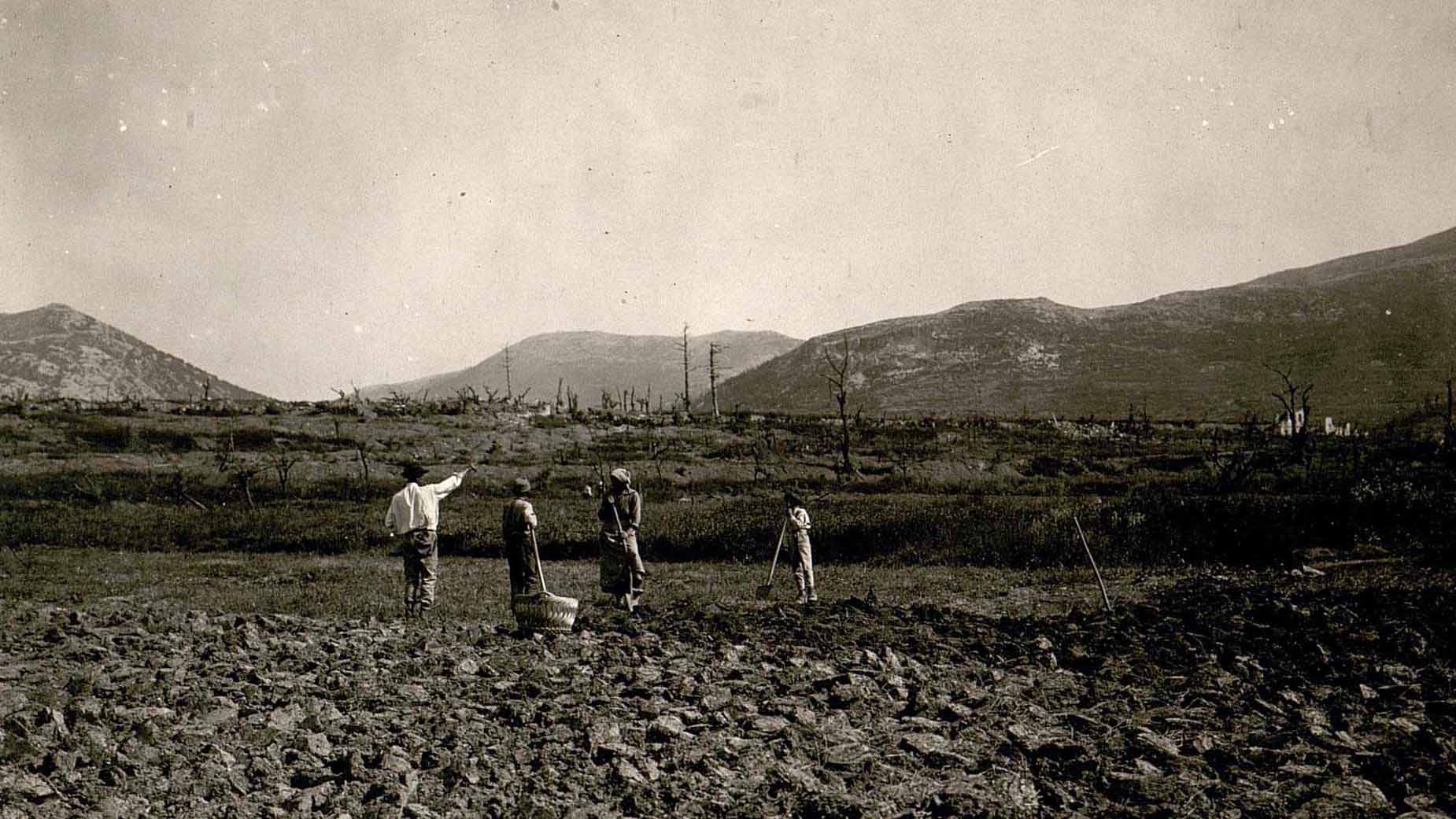 Returned local inhabitants cultivating a field in a devastated area (detail)